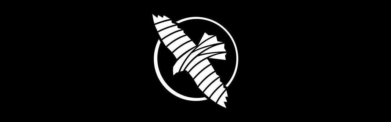 Hayabusa Fightwear Nederland